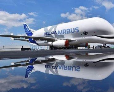 BelugaXL entra en servicio para Airbus | Noticias 10