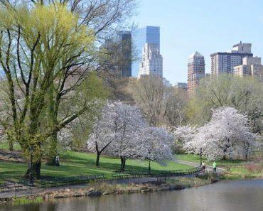 10 mejores cosas gratis que hacer en Nueva York, NY 1