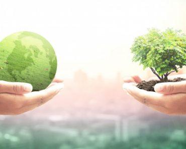 IHIF 2020: lanzamiento del Consejo de Sostenibilidad en Berlín | Noticias 10