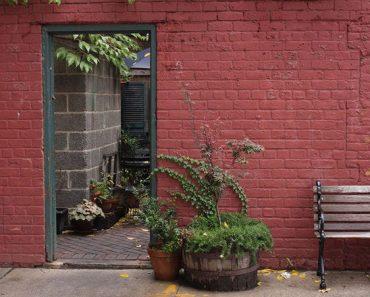 Los mejores restaurantes para la primavera: Restaurantes en Nueva York 1