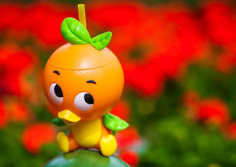 Citrus Blossom Menu & Food Review: Epcot Flower & Garden Festival 13